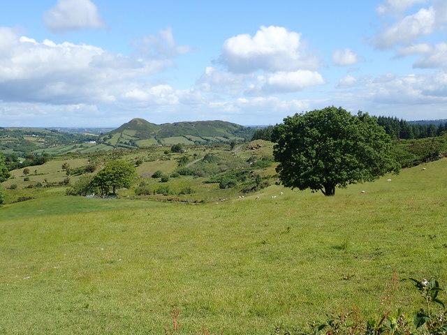 Sturgan Mountain and Sugarloaf Hill from Ballard Road