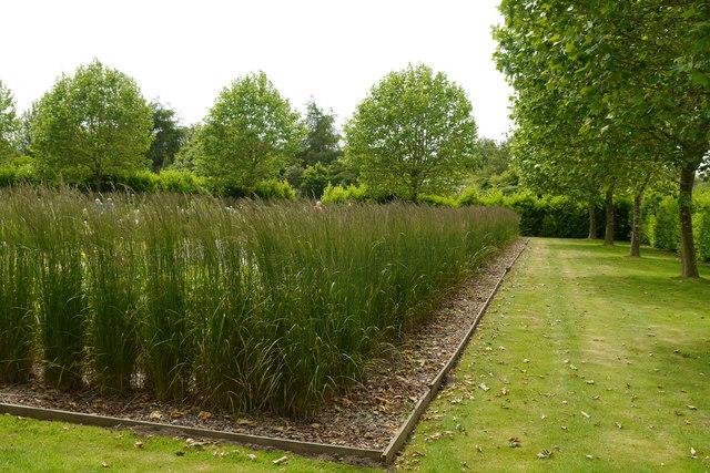 Peony and Daylily Garden, Breezy Knees Gardens