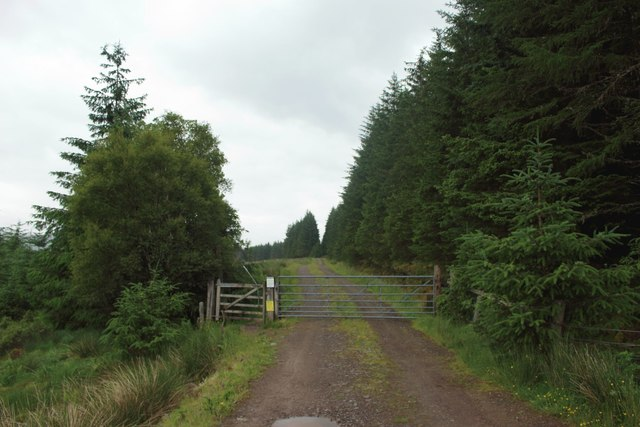 Gated track, Leanachan Forest