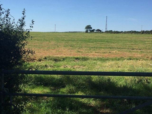 Field at Croes y Fran