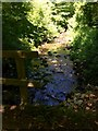 SN0334 : Afon Gwaun by Alan Hughes