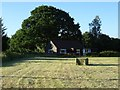 SO8742 : Hay bale in Earl's Croome by Philip Halling