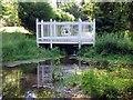 SU8394 : Footbridge in the Water Garden by Steve Daniels