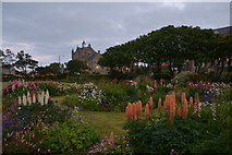 HU4741 : Gardens in King Harald Street Lerwick, Shetland by Andrew Tryon