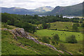 NY2418 : Outcrop near Ellers, Borrowdale by Ian Taylor