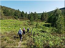 NH6876 : Hill Track 320 through Strath Rory by Julian Paren
