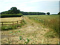 SJ8519 : The first 50 yards of the bridleway by Richard Law