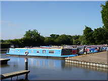 SP0272 : Alvechurch Marina, Worcester & Birmingham Canal by Jeff Gogarty