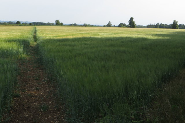 Footpath to the Bicester Road