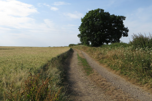 Bridleway to Stoke Lyne