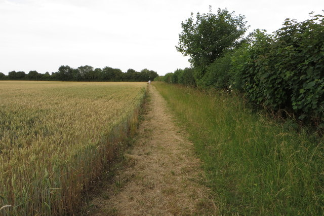 Footpath to Stoke Lyne