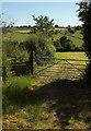 SE2852 : Path to Brackenthwaite by Derek Harper