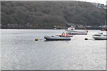 SX1251 : Moored in the Fowey Estuary by N Chadwick