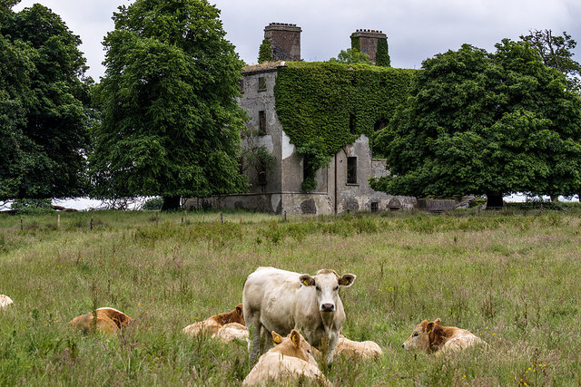 Ireland in Ruins: Clogher House, Co. Mayo (2)