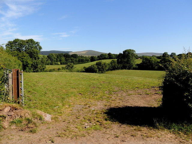 An open field, Drumnahoe by Kenneth  Allen
