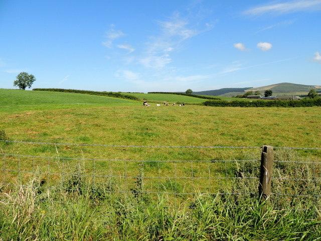 Ballymullarty Townland by Kenneth  Allen