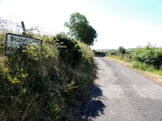Ballymullarty Road by Kenneth  Allen