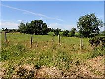 H3990 : Ballymullarty Townland by Kenneth  Allen