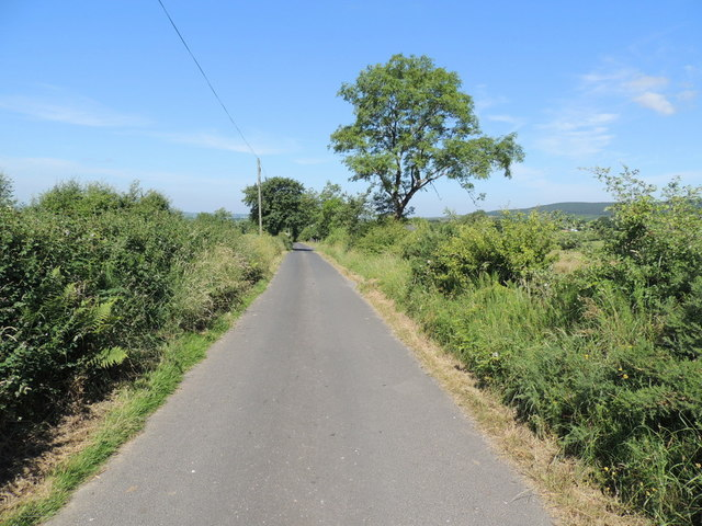 Camus Road, Ballymullarty by Kenneth  Allen