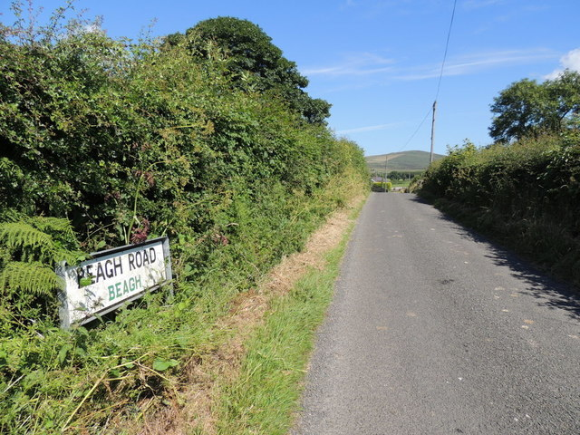 Beagh Road, Beagh by Kenneth  Allen