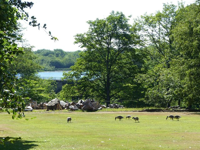 Lawnmowers at Nostell Priory