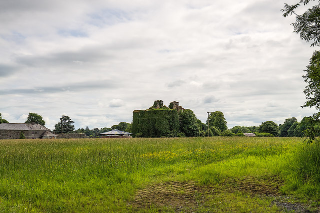Ireland in Ruins: Dunsandle House, Co. Galway (1)