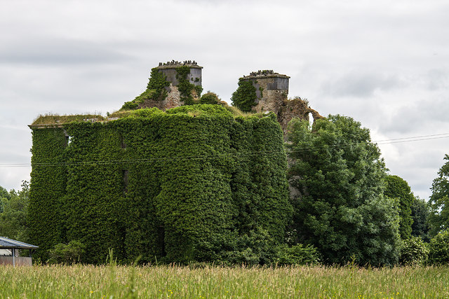 Ireland in Ruins: Dunsandle House, Co. Galway (2)