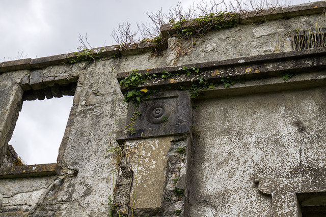 Ireland in Ruins: Limepark House, Co. Galway (3)