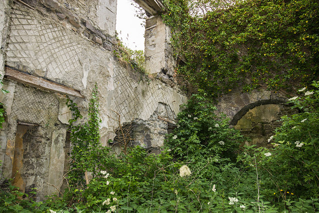 Ireland in Ruins: Limepark House, Co. Galway (4)