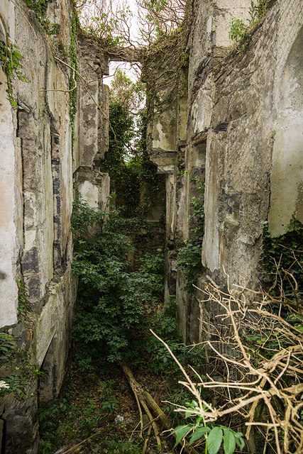 Ireland in Ruins: Limepark House, Co. Galway (5)