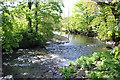 SH4759 : The Afon Gwyrfai at Cae Samuel by Jeff Buck