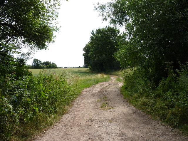 Track near Deans Wood, Haye Lane, Ombersley