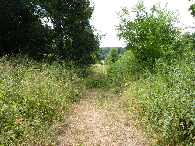 Track of Haye Lane, Hadley