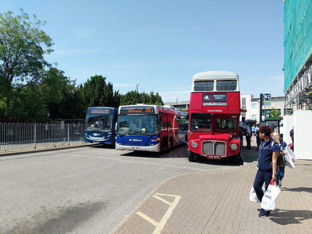 Unusual visitor, Crawley bus station