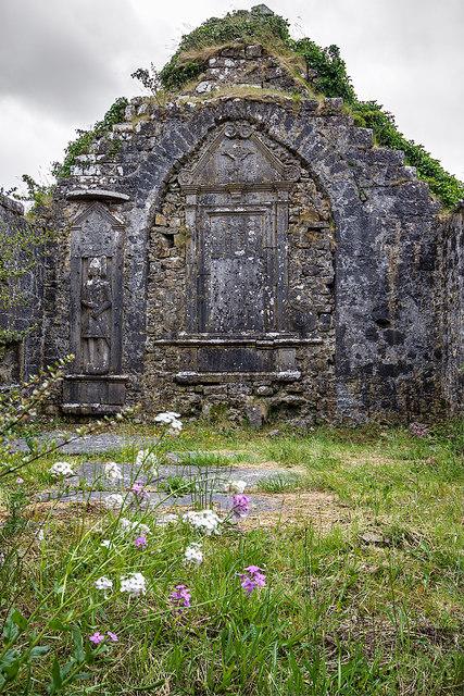 Ballinakill Abbey, Co. Galway (1)
