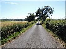 H4963 : Letfern Road, Seskinore by Kenneth  Allen
