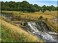 SE2912 : Weir, Lower Lake, Bretton Country Park by Ian Capper