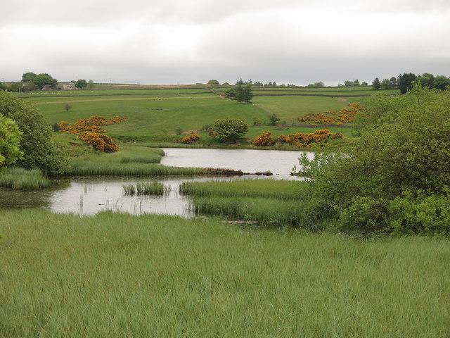 Langley Barony Lead Mine - reservoir