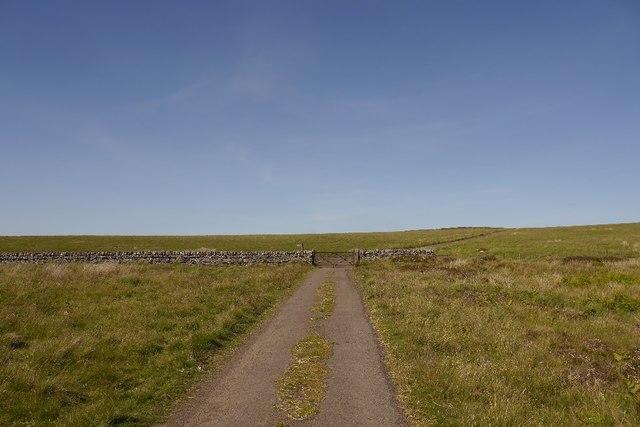 Gated road, Sundaysight