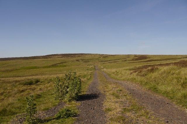Road north of Sundaysight