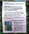 NT2475 : Disease in Botanic Garden by Bill Kasman