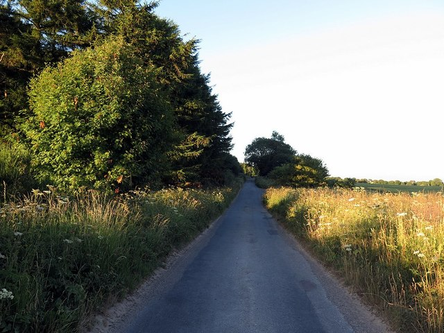 Low Moor Road near Rawcliff Top