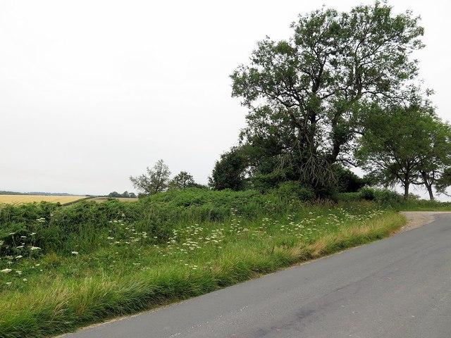 Black Howe round barrow, Rawcliffe Road