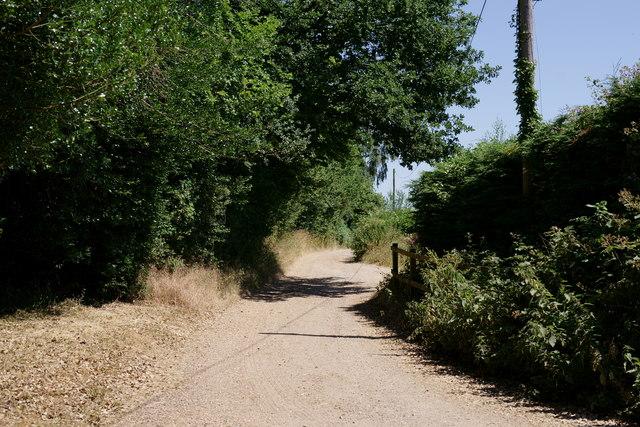 Wey South Path