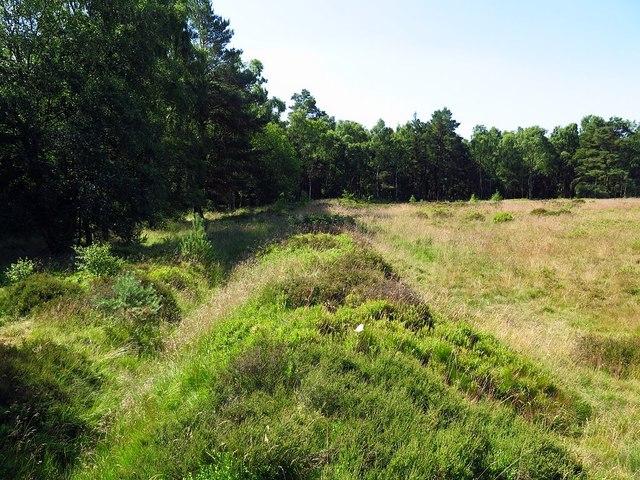 Cawthorn Roman Camp