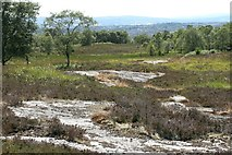 NS5876 : Outcrops of Craigmaddie Sandstone by Richard Sutcliffe