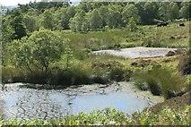 NS5876 : Small lochans by Richard Sutcliffe