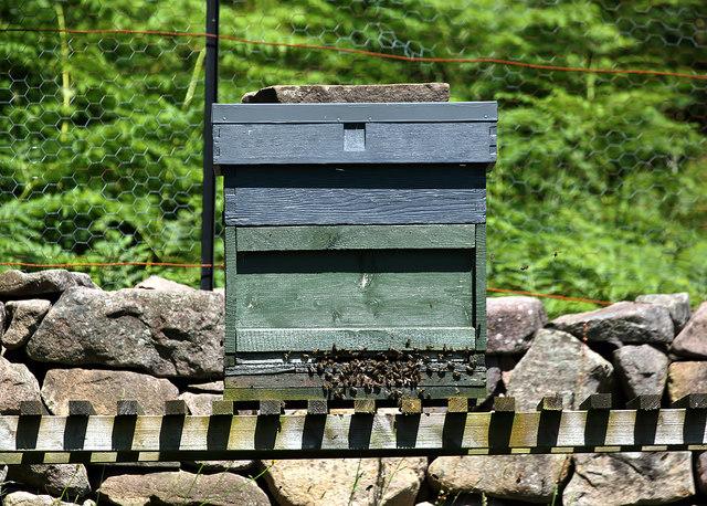 A beehive at Torridon