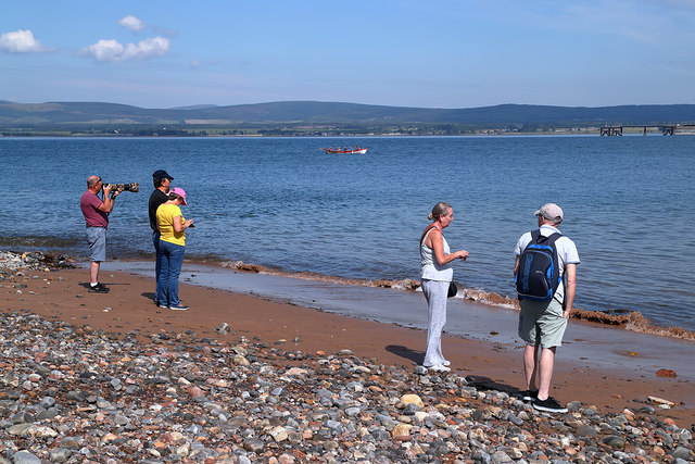 Dolphin watchers at Cromarty