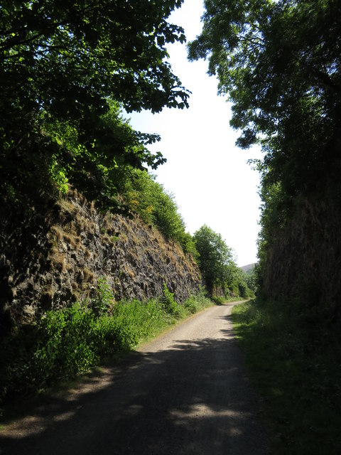 Monsal Trail: cutting east of Miller's Dale